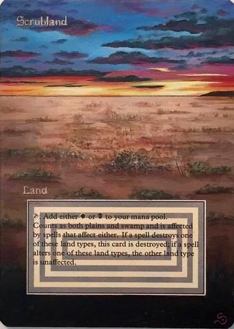 Scrubland Sunset